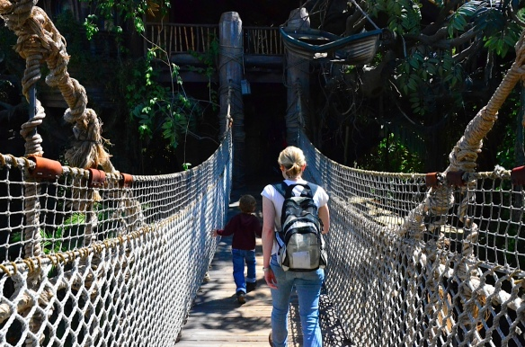 During the Saturday (second) visit to Disneyland, Martin and I headed once again into Tarzan's Treehouse.