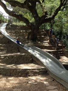 Slide at Codornices Park. Martin is the top kid on the stairs, carrying cardboard in his left hand.