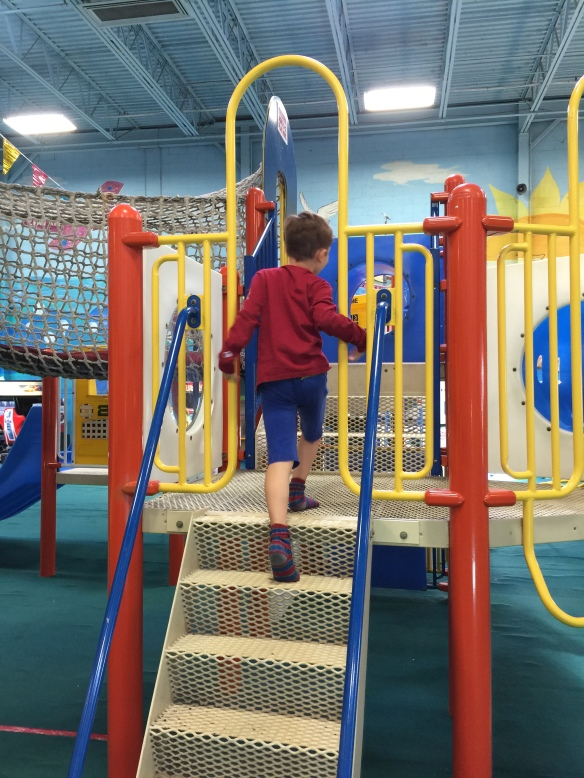 Martin at the playscape, looking for friends.